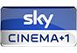 SkyCine1